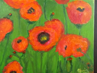 Poppies for Sale